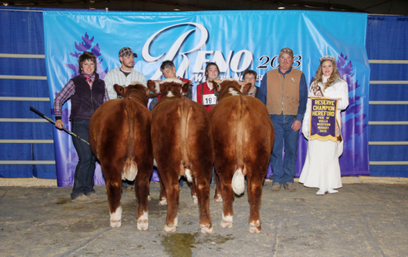 JBB/AL Herefords | Idaho CattleWomen