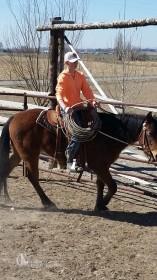 boyridinghorse