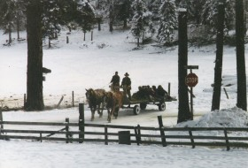 Winter trail rides through timber and pasture for ranch guests.