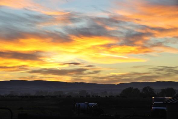 sunriseblog-2